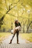 Het jonge moeder spelen met haar dochter in de herfstpark stock fotografie
