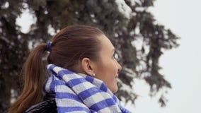 Het jonge mooie het glimlachen brunette bekijkt het ferriswiel stock videobeelden