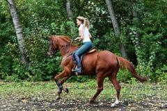 Het jonge mooie meisje van het land met paard Stock Fotografie