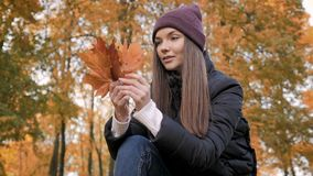 Het jonge mooie meisje verzamelt een boeket van gevallen bladeren in de herfstpark stock video