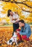 Het jonge paar spelen met honden in openlucht Stock Fotografie