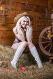 Het jonge sexy meisje in ondergoed zit in de schuur met hooi stock fotografie
