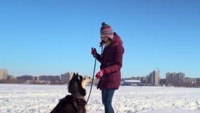 Het jonge vrouw spelen met haar Schor hond op bevroren rivier tegen achtergrond van cityscape stock video