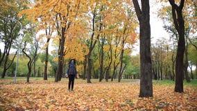 Het jonge vrouw werpen omhoog gaat in de herfstpark weg Het vrouwelijke spelen, bladeren het vallen stock video