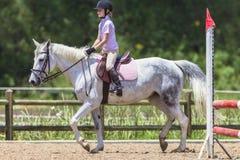 Het jonge Witte Paard van het Meisje Ruiter Stock Afbeelding