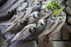 Het jonge zeug-Hoofd van de vissenmarkt Brasemsvissen Stock Afbeeldingen