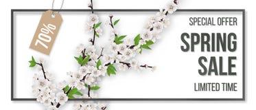 Het kader bloeiende takken van de de lenteverkoop op witte achtergrond royalty-vrije illustratie