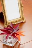 Het kader van Autumn Leaves en van de foto Royalty-vrije Stock Fotografie