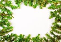 Het kader van boomtakken Stock Fotografie