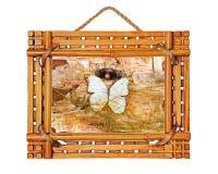 Het kader van de bamboefoto met abstracte samenstelling van vlinders, bir Stock Foto's