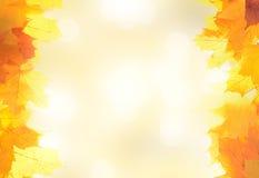 Het kader van de de herfstdecoratie dat van bladeren wordt gemaakt Royalty-vrije Stock Fotografie
