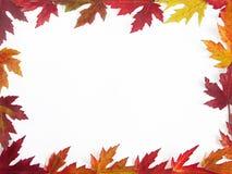Het kader van de herfst stock afbeeldingen