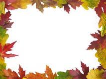 Het kader van de herfst stock afbeelding