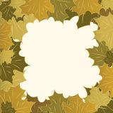 Het kader van de herfst van esdoornbladeren Royalty-vrije Stock Foto's