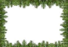 Het kader van de Kerstmispijnboom Royalty-vrije Stock Afbeelding