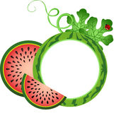 Het Kader van de watermeloenfoto Royalty-vrije Stock Foto's
