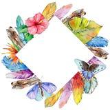 Het kader van de waterverfvogelveer van vleugel royalty-vrije illustratie