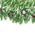 Het kader van Kerstmis met sneeuw en kegels Royalty-vrije Stock Fotografie
