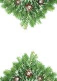 Het kader van Kerstmis met sneeuw en kegels Stock Foto