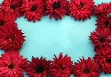 Het kaderontwerp van chrysantenbloemen royalty-vrije stock foto's