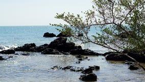 Het kalme tropische strand stock afbeeldingen