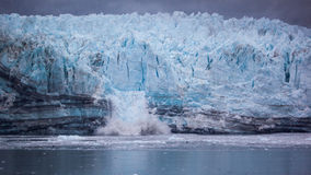 Het kalven Gletsjer in het Nationale Park van de Gletsjerbaai Stock Afbeelding