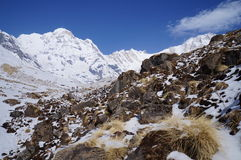 Het Kamp Duidelijke Dag van de Annapurnabasis Royalty-vrije Stock Afbeeldingen