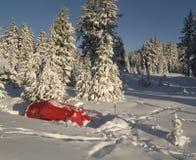 Het kamp van de winter onder de bomen Royalty-vrije Stock Afbeelding