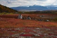 Het kamp van Herders in de de herfstbergen stock afbeeldingen