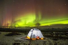 Het kamperen Alaska Stock Afbeeldingen