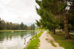 Het kamperen bij het meer Stock Foto