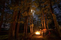 Het kamperen bij nacht met een brand Stock Foto's