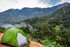 Het kamperen in bos met tent en bosmening stock afbeeldingen