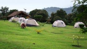 Het kamperen in de Rwenzori-Bergen Stock Afbeeldingen