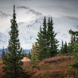 Het kamperen in Denali royalty-vrije stock foto