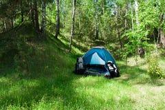 Het kamperen in een hout Stock Afbeeldingen