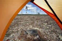 Het kamperen in het bos Stock Foto