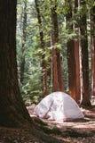 Het kamperen in het park van de sanbornprovincie Stock Fotografie