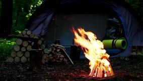 Het kamperen met brand bij nacht in wildernis stock videobeelden