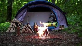 Het kamperen met brand bij nacht in wildernis stock footage