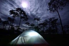 Het kamperen met tenten op de berg in het maanlicht in Phu Soi Dao Stock Afbeelding