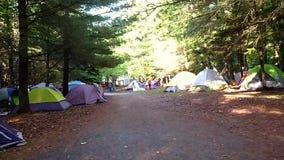 Het kamperen plaats met vele tenten stock videobeelden