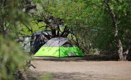 Het kamperen Plaats: Tent in de Schaduw van Bomen stock foto's