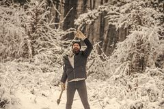 Het kamperen, het reizen en de winterrust stock afbeelding
