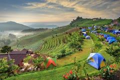 Het kamperen tent Royalty-vrije Stock Fotografie