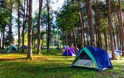 Het kamperen Tent Royalty-vrije Stock Afbeelding