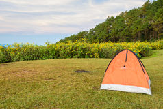 Het kamperen tent met de mooie scène van de bergaard Stock Fotografie
