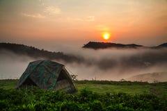 Het kamperen tent met zonneschijn Stock Fotografie