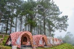 Het kamperen tenten in nationaal park Stock Foto's