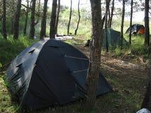 Het kamperen van bossen royalty-vrije stock afbeeldingen